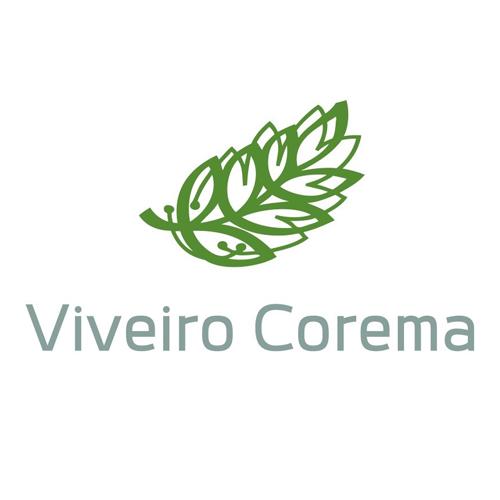 Viveiro Corema