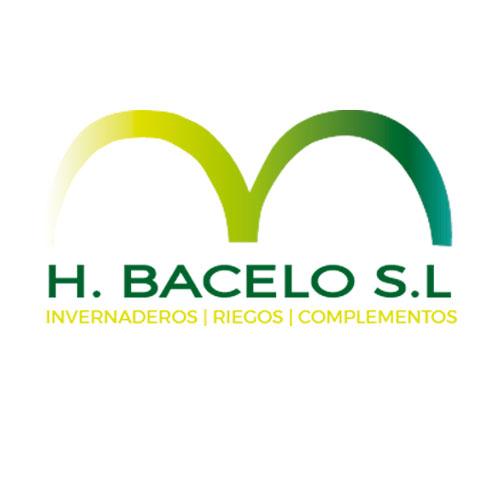 Hortalizas Bacelo