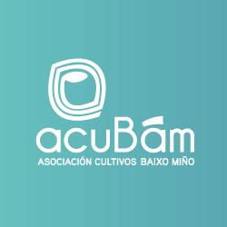 logo-250-2020