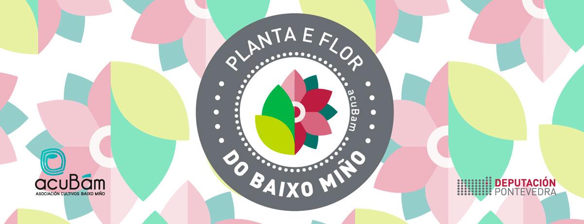 Sello planta y flor del Baixo Miño